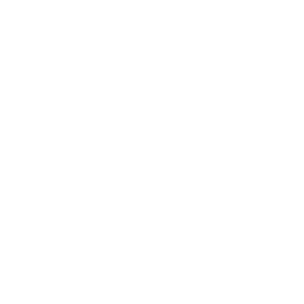 Icon Picture of an embroidered hat