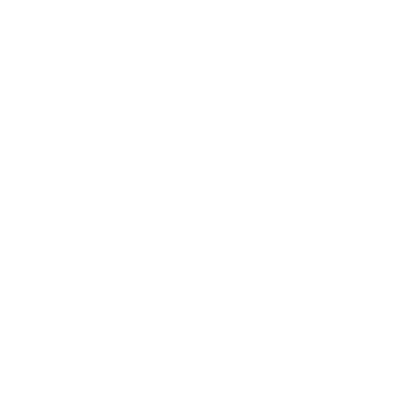 Icon picture of a shirt